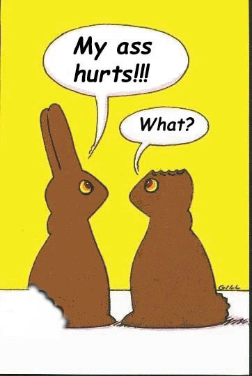 funny quotes happy bunny. happy easter funny quotes.